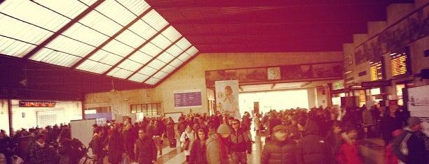 "Firenze Santa Maria Novella Railway Station (ZMS) is one of Foursquare needs a ""Subway Hero Badge""."