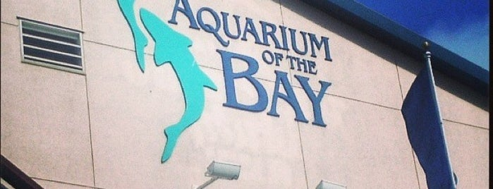 Aquarium of the Bay is one of SF.