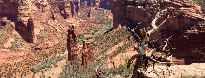 Canyon De Chelly National Monument is one of National Parks.