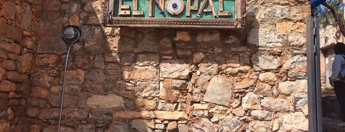 Top 10 favorites places in San Luis Potosí, Mexico