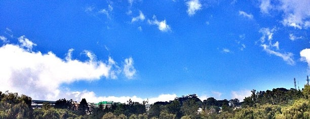 Burnham Park is one of Guide to Baguio City's best spots.