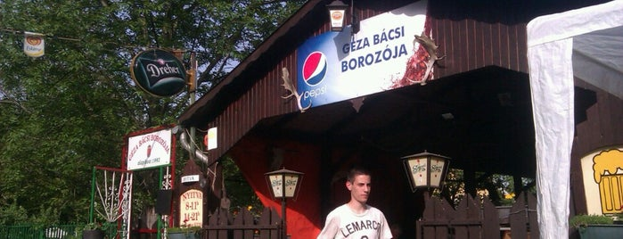 Géza bácsi borozója is one of Badge ¤ Porky.