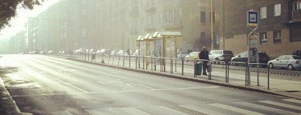 Márvány utca (61) is one of Budai villamosmegállók.