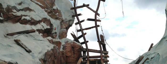 Expedition Everest is one of Roller Coaster Mania.