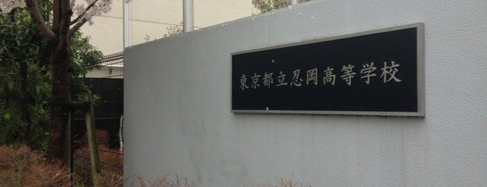 東京都立 忍岡高等学校 is one of 都立学校.