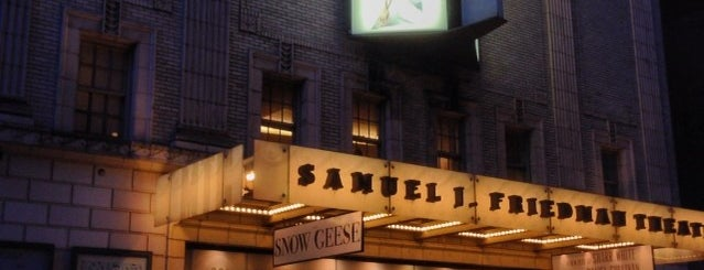 Samuel J. Friedman Theatre is one of NYC Broadway Theatres.