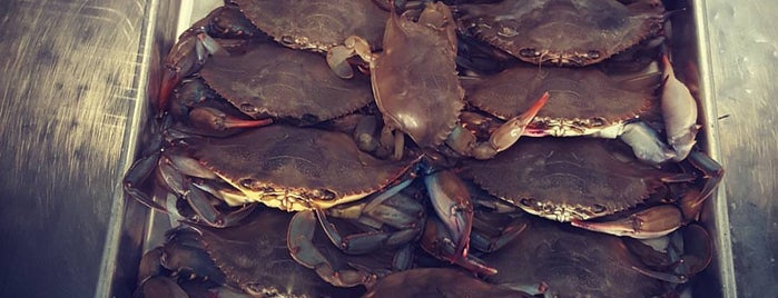 Blake's Crab House is one of GOTTA BE FROM BMORE TO KNOW ABOUT:.