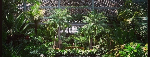 Garfield Park Conservatory is one of Windy City.