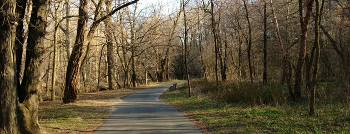 Pennypack Park is one of Parks-Outdoors.