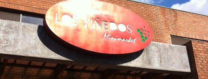 Los Viñedos Minimarket is one of Peñalolén.