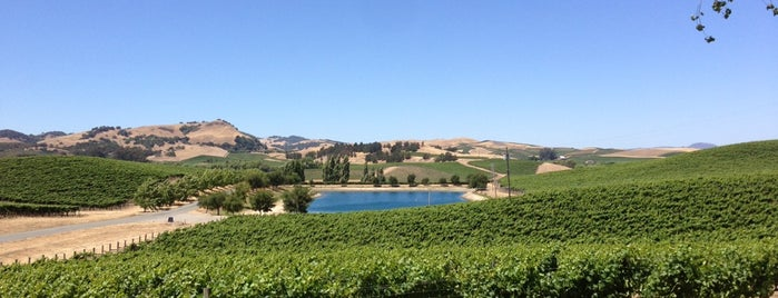 Cuvaison Estate Wines is one of SF to-do.