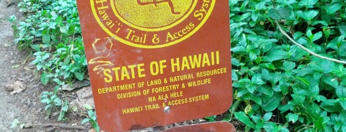 Maunawili Falls Trail is one of Go to places.