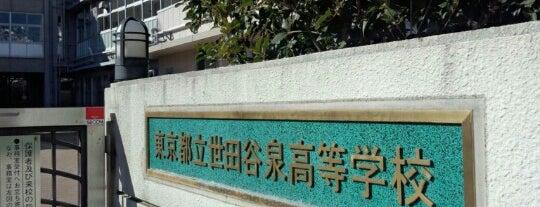 東京都立 世田谷泉高等学校 is one of 都立学校.