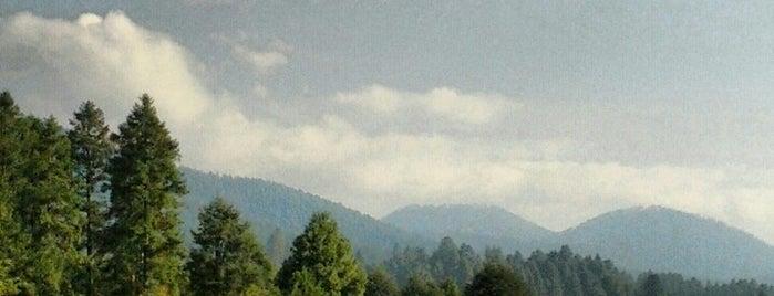 Valle del Conejo is one of Lugares para correr.