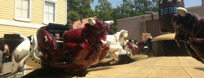 Rodeo is one of Must-visit Theme Parks in Arlington.