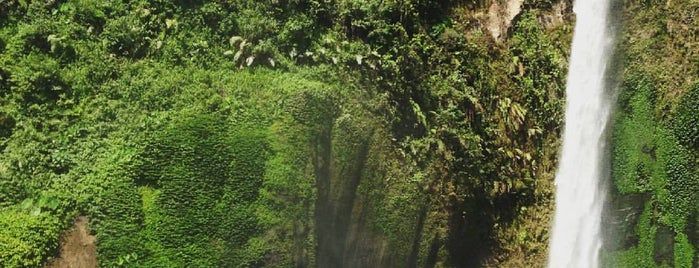 Wana Wisata Coban Pelangi is one of Top 10 places to try this season.