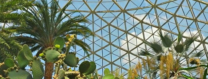 Mitchell Park Horticultural Conservatory (The Domes) is one of Kitty list.