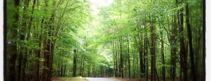 Fred G. Bond Metro Park is one of Raleigh's Best Parks, Greenways & Gardens.