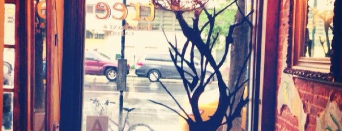 tree bistro is one of Outdoor & Rooftop.