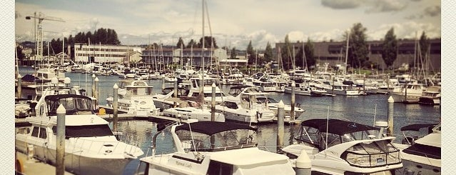 Dock Street Marina is one of top ten things to do in Tacoma when sunny.
