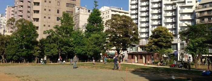 白金台どんぐり児童遊園 is one of 公園.