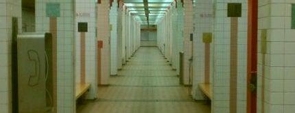 MBTA Broadway Station is one of Boston MBTA Stations.