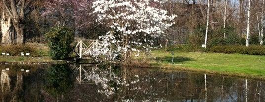 """Orto Botanico Universitario """"Casina Rosa"""" is one of Guida turistica al quartiere di Lambrate."""