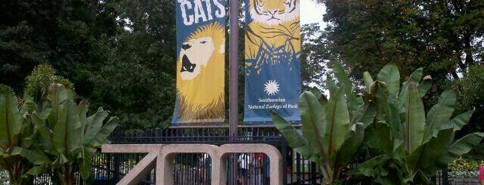 Smithsonian National Zoological Park is one of Must-visit Arts & Entertainment in Washington.