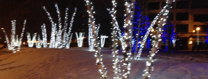 Rosa Parks Ice Rink is one of Parks/Outdoor Spaces in GR.