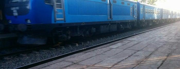 Pallewela Railway Station is one of Railway Stations In Sri Lanka.