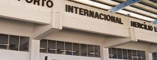 Aeroporto Internacional de Florianópolis / Hercílio Luz (FLN) is one of sem perímetro.