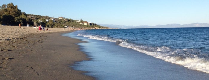 Mavrovouni Beach is one of Must-visit Beaches in Laconia.