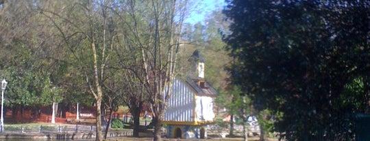 Parque de Doña Casilda is one of cosas visitadas.