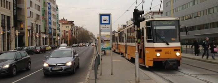 Csörsz utca (17, 61) is one of Budai villamosmegállók.