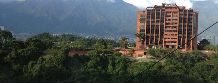 Restaurante Oceanico is one of Lugares Conocidos Caracas.