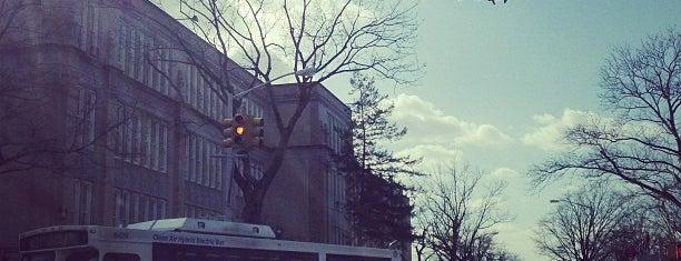 Bayside High School is one of NYC Hurricane Evacuation Centers.