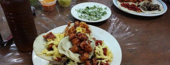 "Taqueria ""La Casa del Torero"" is one of Restaurantes en Ciudad del Carmen, Campeche."