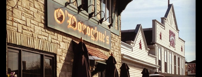 O'Donoghue's Irish Pub is one of Elm Grove.