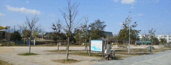 兵庫県立尼崎の森中央緑地 is one of 公園.