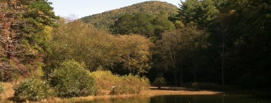 Unicoi State Park is one of Documerica.