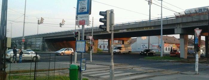 Nagykőrösi út (3, 52) is one of Pesti villamosmegállók.
