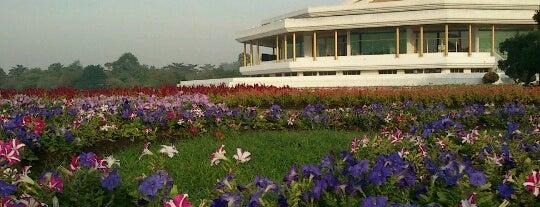 สวนหลวง ร.9 (Suanluang Rama IX) is one of Thailand For Family.