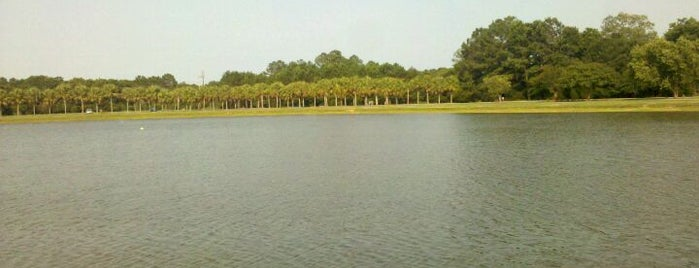 James Island County Park Dog Park is one of Charleston Lowcountry Dog Runs.