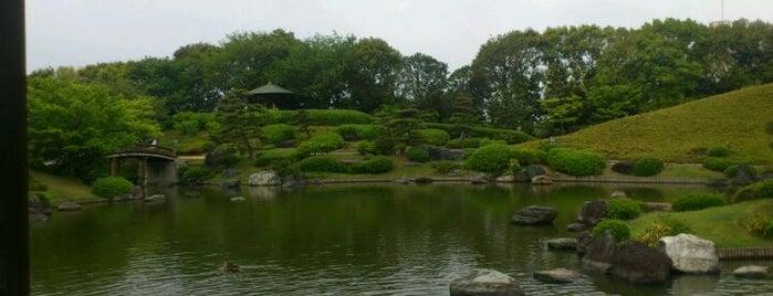 大仙公園 is one of 公園.