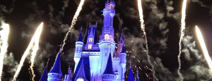 Magic Kingdom® Park is one of Dicas de Orlando..
