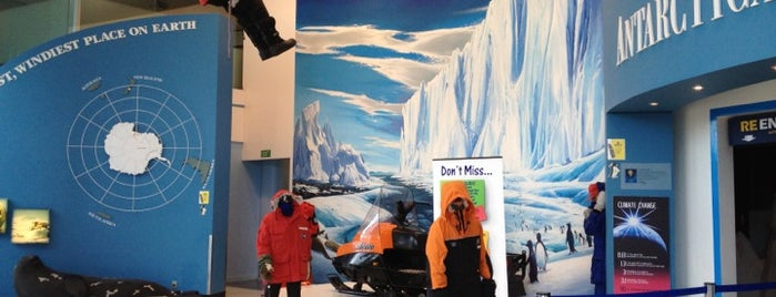 International Antarctic Centre is one of Fun Group Activites around New Zealand.