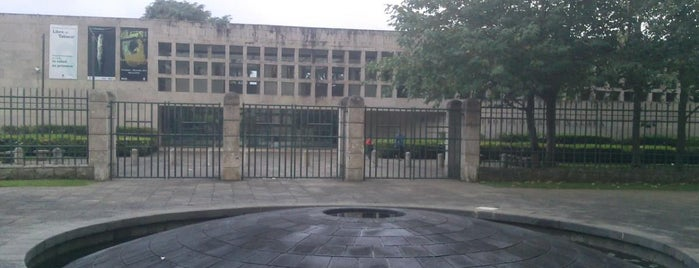 Museo de Antropologia de Xalapa is one of Muchos.