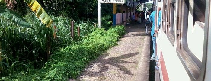 Magalegoda Railway Station is one of Railway Stations In Sri Lanka.