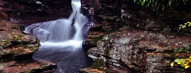 Ricketts Glen State Park is one of Best Places to Check out in United States Pt 4.