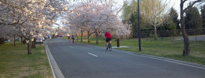Hains Point Bike Trail is one of traveling.